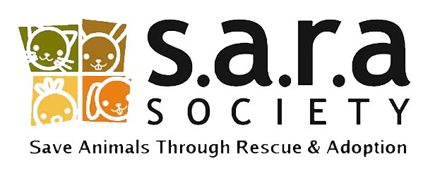 No-kill Animals Rescue and Adoption Society in Surrey